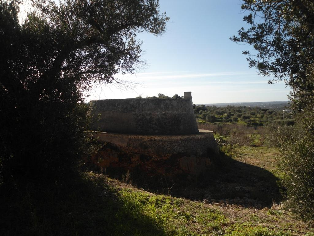 Trullo for sale on the hills of Ostuni
