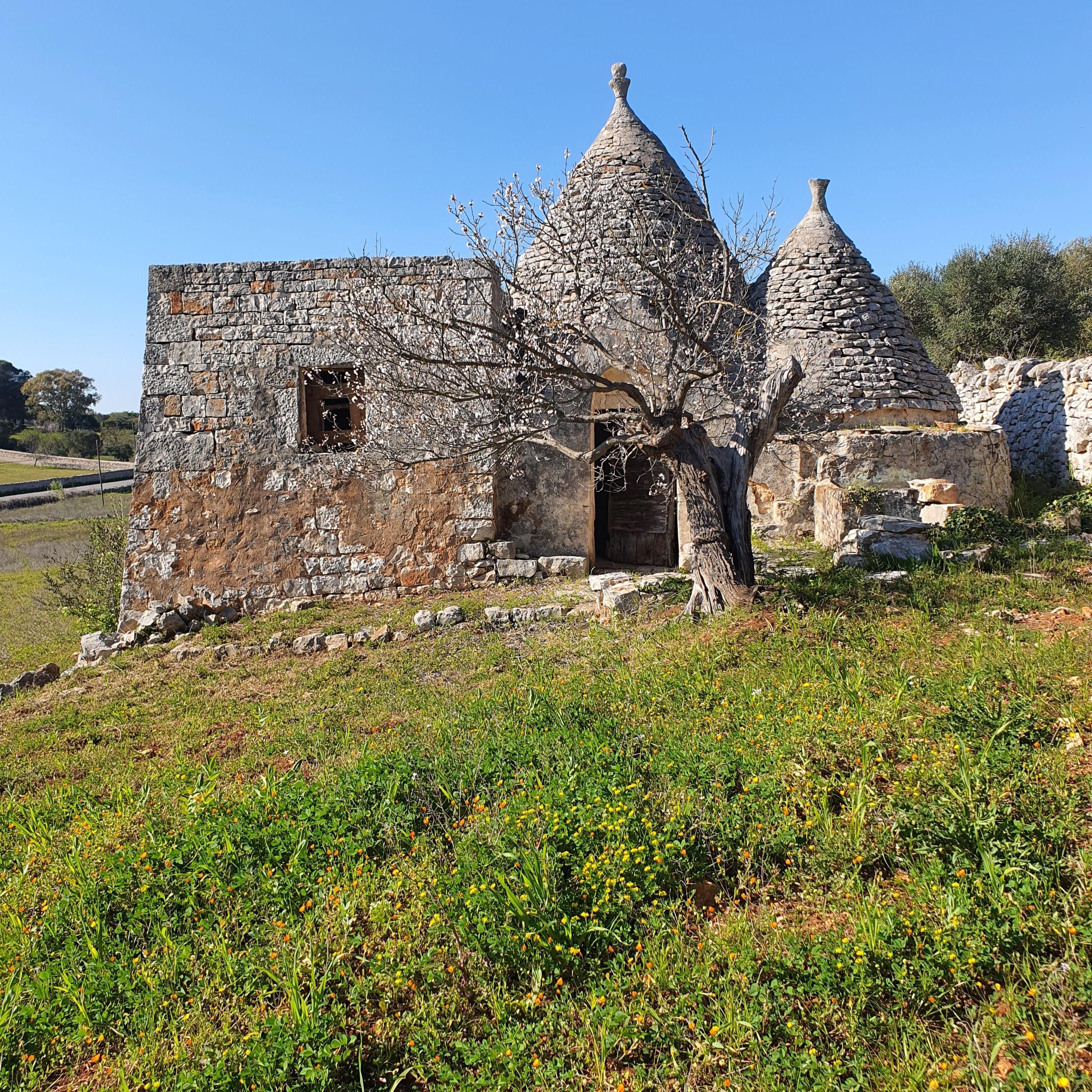 Trulli to Renovate in Itria Valley